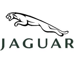 scan2cad-jaguar